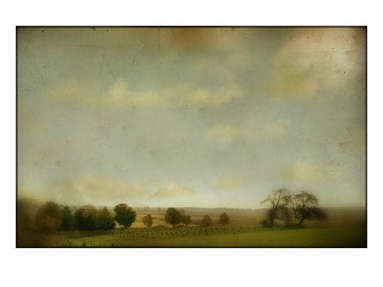 mia-friedrich-field-of-crops-and-trees