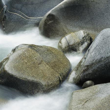 micha-pawlitzki-westland-national-park-south-island-new-zealand