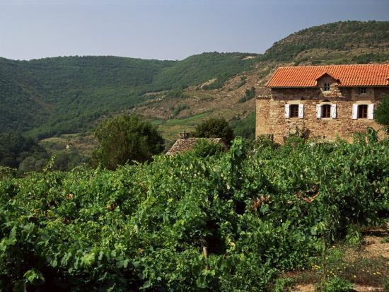 michael-busselle-farmhouse-near-millau-aveyron-midi-pyrenees-france