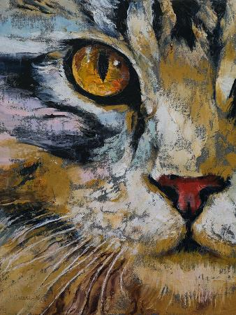 michael-creese-maine-coon-cat