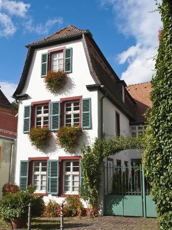 michael-defreitas-old-town-heidelberg-germany