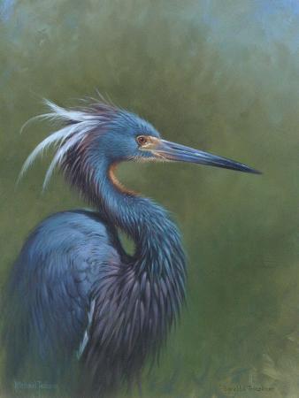 michael-jackson-tricolour-egret