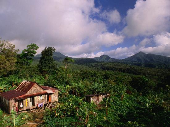 michael-lawrence-overhead-of-house-in-rainforest-roseau-valley-dominica