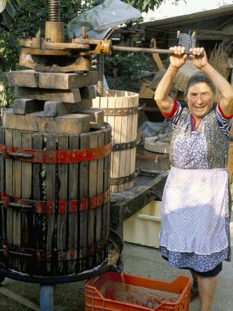 michael-newton-a-local-winemaker-pressing-her-grapes-at-the-cantina-torano-nuovo-abruzzi-italy