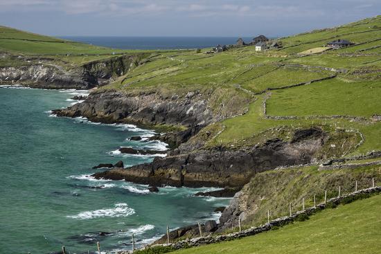 michael-nolan-sheep-fences-and-rock-walls-along-the-dingle-peninsula
