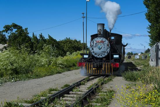 michael-runkel-la-trochita-old-patagonian-express-between-esquel-and-el-maiten-in-chubut-province-south-america