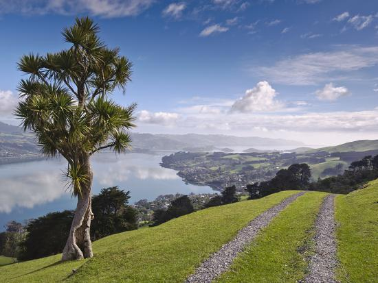 michael-snell-otago-harbour-otago-peninsula-otago-south-island-new-zealand-pacific