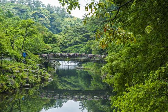 michael-stone-bridge-with-flowers-in-seogwipo