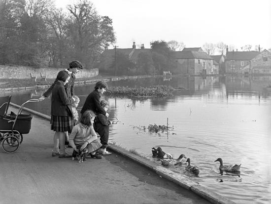 michael-walters-village-duck-pond-scene-tickhill-doncaster-south-yorkshire-1961