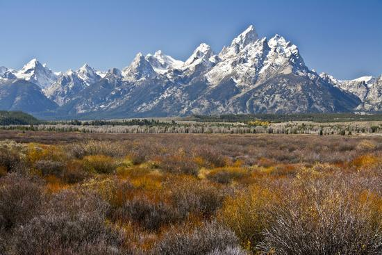 yellowstone vacation idea barn bison a park parks loom tetons and harper over the national andrew itinerary celebrating lg teton cabins grand travel