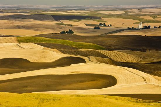michel-hersen-palouse-fields-from-steptoe-butte-steptoe-butte-sp-washington