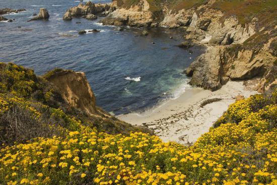 michel-hersen-surf-shore-and-beach-garrapata-state-park-california-usa