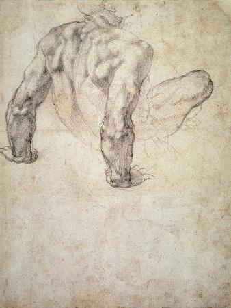 michelangelo-buonarroti-w-63r-study-of-a-male-nude-leaning-back-on-his-hands