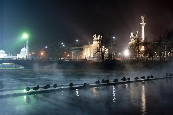 milan-radisics-ducks-silhouetted-at-night-on-heroes-square-budapest-july-2009