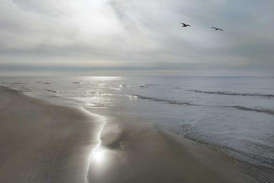 monte-nagler-beach-flight
