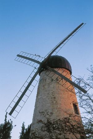montefiore-windmill