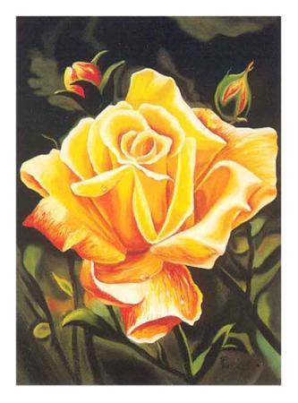 n-fiore-the-golden-flower
