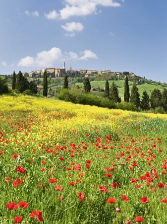 nadia-isakova-hill-town-pienza-and-field-of-poppies-tuscany-italy
