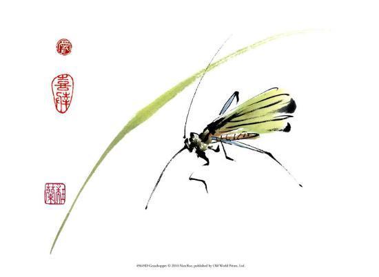 nan-rae-grasshopper