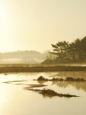 nance-trueworthy-quiet-moments-overlooking-the-marsh-at-dawn-scarborough-maine