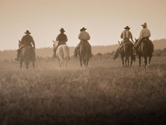 Фото ковбоя на лошади