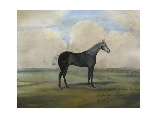 naomi-mccavitt-the-kicker-a-steel-grey-racehorse