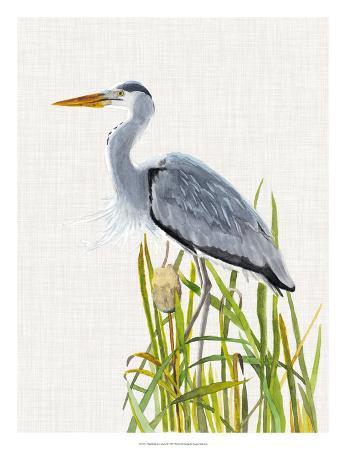 naomi-mccavitt-waterbirds-cattails-ii