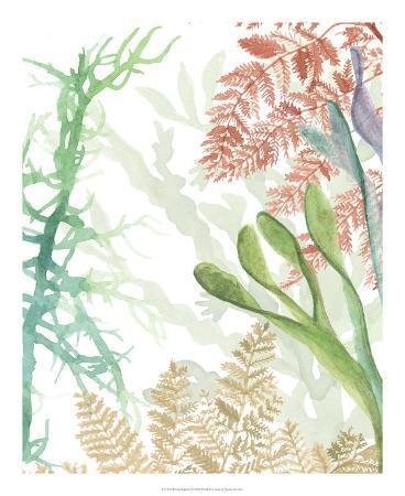 naomi-mccavitt-woven-seaplants-i