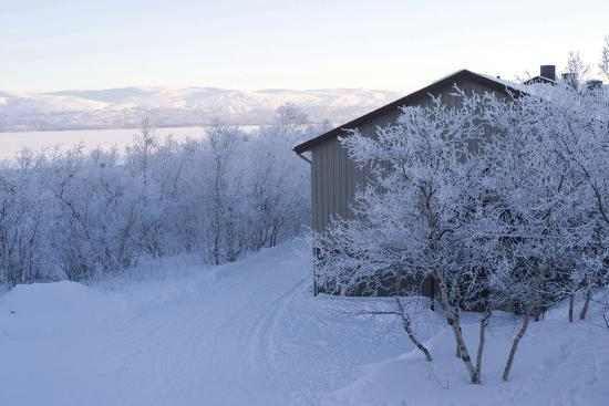 natalie-tepper-snow-covered-scenery-abisko-sweden