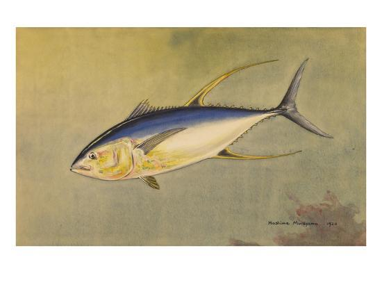 national-geographic-society-a-painting-of-the-rare-allison-tuna