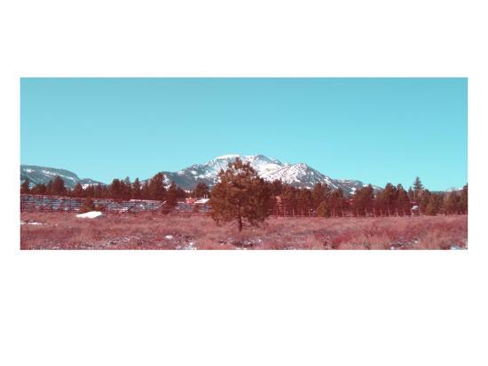 naxart-mammoth-mountain
