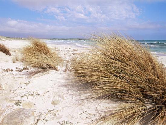 neale-clarke-bales-beach-seal-bay-con-park-kangaroo-island-south-australia-australia