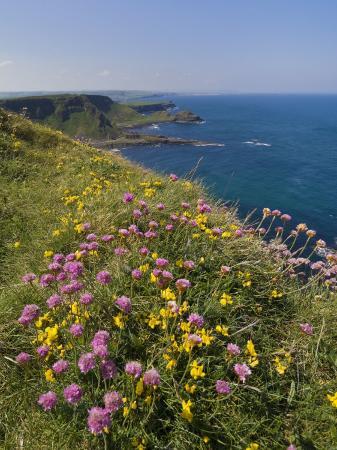 neale-clarke-north-antrim-coast-path-to-the-giant-s-causeway-county-antrim-ulster-northern-ireland-uk