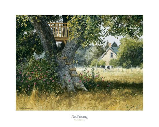 ned-young-meadow-hideaway