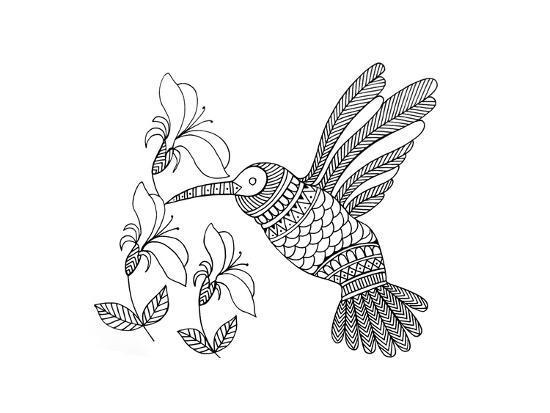 neeti-goswami-bird-hummingbird-1