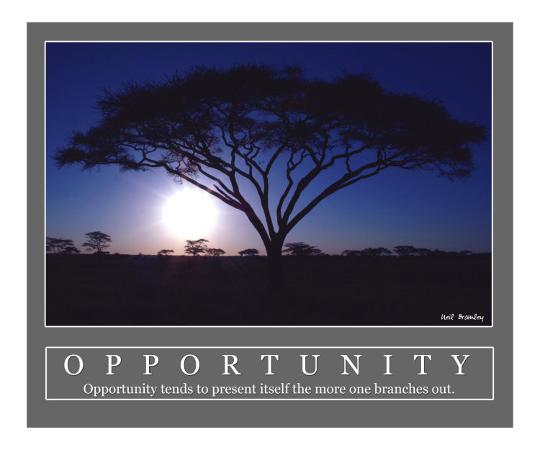 neil-bramley-opportunity-acacia-tree-africa