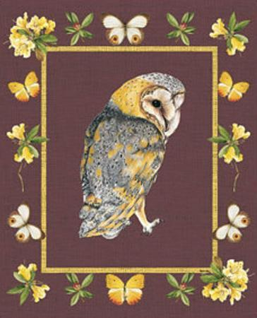 nice-animals-owl