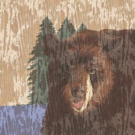 nicholas-biscardi-lodge-bear
