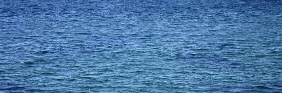 nicole-katano-aqua-waters-ii