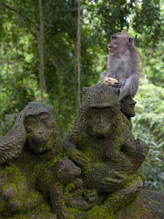 niels-van-gijn-bali-ubud-a-macaque-sitting-on-a-stone-carving-of-a-macaque