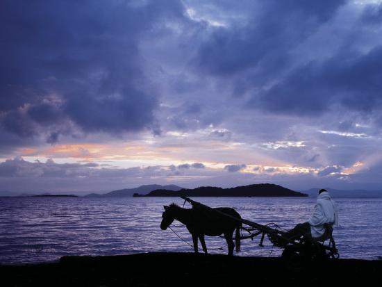 nigel-pavitt-dawn-at-lake-ziway-central-ethiopia-with-the-silhouette-of-a-horse-drawn-buggy
