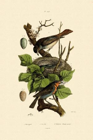 nightingale-1833-39