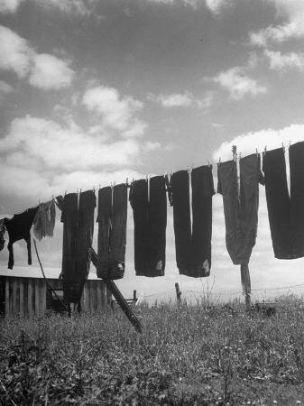 nina-leen-laundry-hanging-out-to-dry