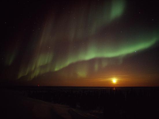 norbert-rosing-the-aurora-borealis-streaks-across-the-twilight-sky