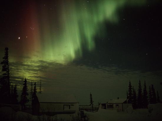norbert-rosing-the-aurora-borealis-streaks-down-across-the-night-sky