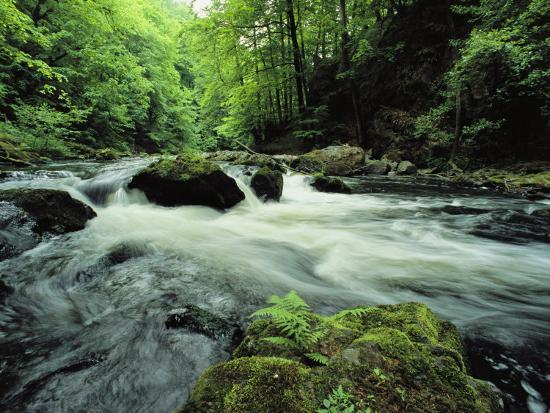 norbert-rosing-woodland-stream-and-rapids-time-exposure