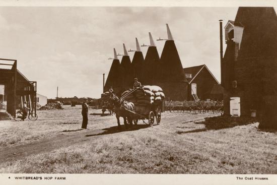 oast-houses-whitbread-hop-farm-kent
