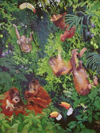 odile-kidd-orangutangs-and-toucans-1998