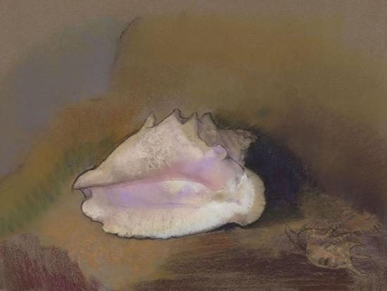 odilon-redon-the-shell-bottom-right-small-shell-in-the-shadow