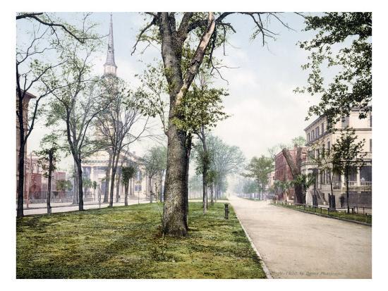 oglethorpe-avenue-savannah-georgia